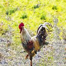 Rugged Rooster II  [iPhone Case] by dunawori