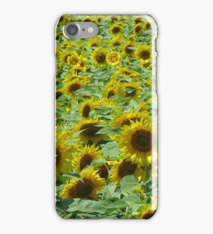 iPhone Case ~ CT Sunflower Field iPhone Case/Skin