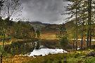 Blea Tarn In October by Jamie  Green