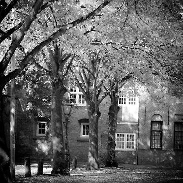 Leiden, Early Autumn by giuliomenna