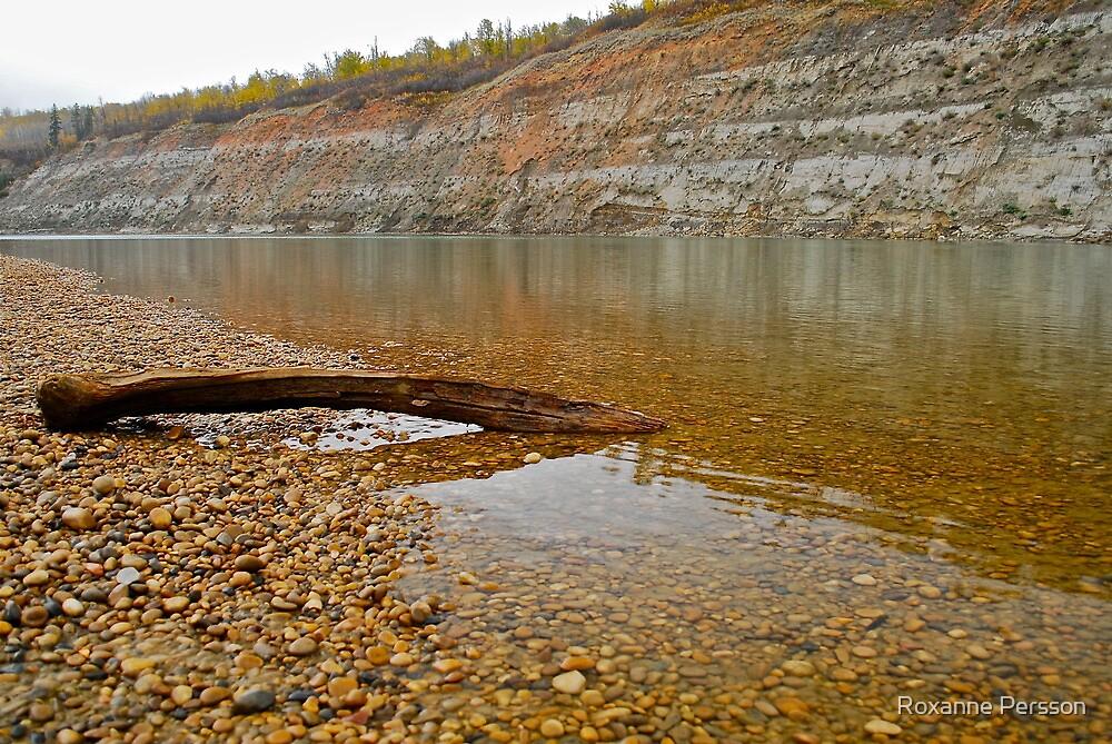 Autumn Afternoon - North Saskatchewan River by Roxanne Persson