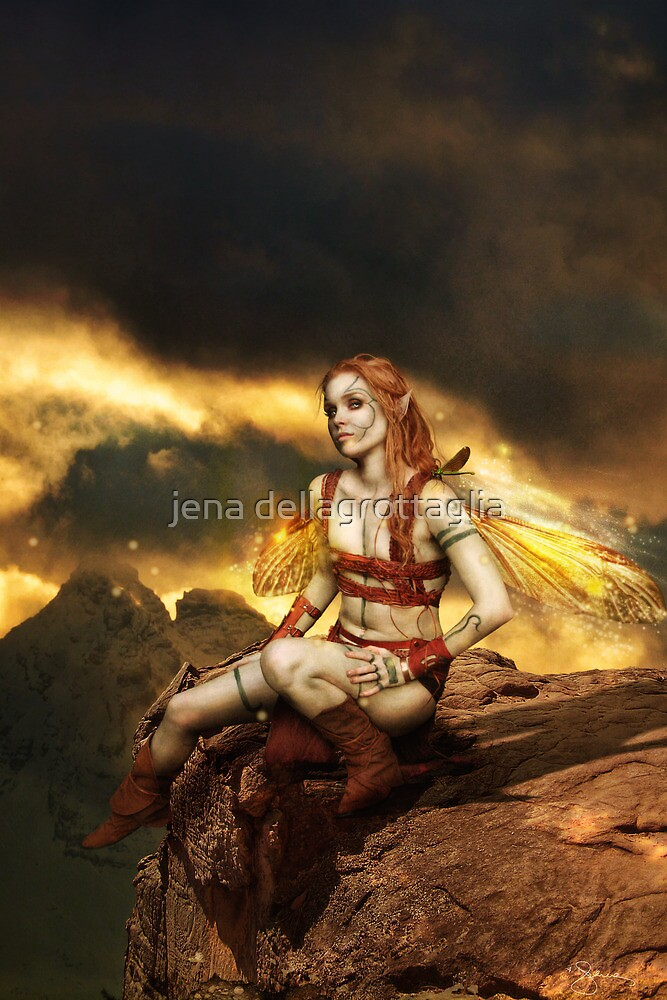 Dragonflies by jena dellagrottaglia