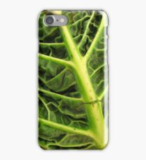 iPhone Case - For The Glory of Cabbage iPhone Case/Skin