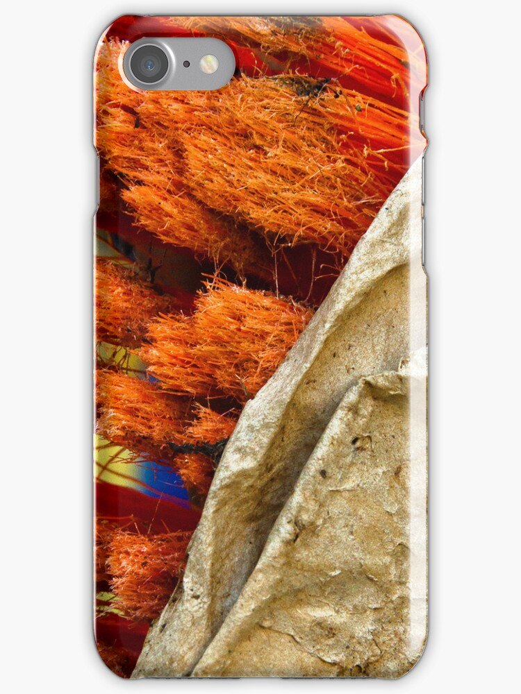 iPhone Case - Orange Scrub in a Brown Paper Bag by Orla Cahill Photography