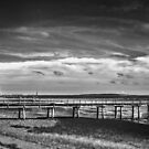 Back Yard Pier by Jack DiMaio