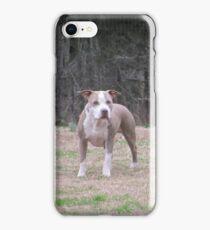 APBT iPhone Case - Buster iPhone Case/Skin