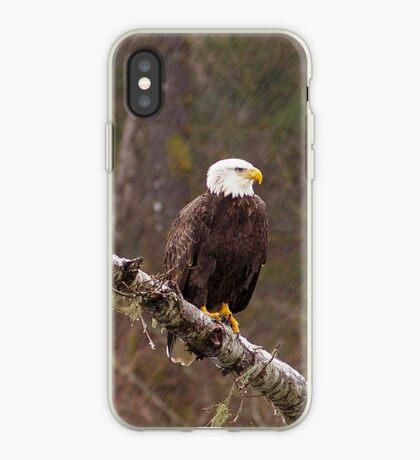 Skagit River Bald Eagle (Medium) iPhone case. iPhone Case