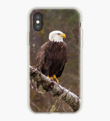 Skagit River Bald Eagle (Large) iPhone case. iPhone Case
