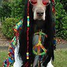 HIPPIE DUDE    'SUP DOGG ? by mando13