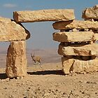 Goat-antelope on the verge of Ramon crater near desert sculpture by Ilan Cohen