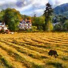 Craig-y-Dderwen, Betws-y-Coed, Snowdonia, Wales by David Carton