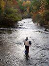 Fall Fly Fishing At Beavers Bend by Carolyn  Fletcher