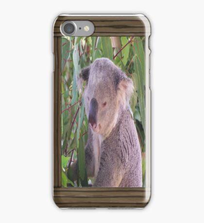 Koala (iPhone Case) iPhone Case/Skin