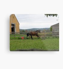 New Jersey Horse Farm Metal Print