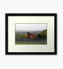 Remy Framed Print