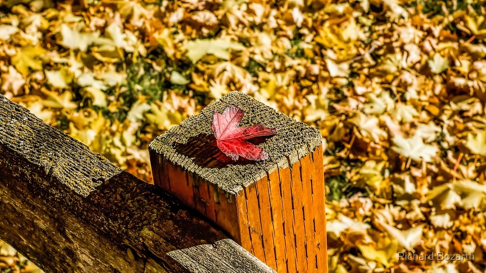 Redmond in fall set 101a by Richard Bozarth