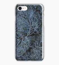 Dead Tree Branches iPhone Case/Skin
