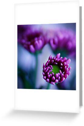 Colour Of Life XXXIV [Print & iPad Case] by Damienne Bingham