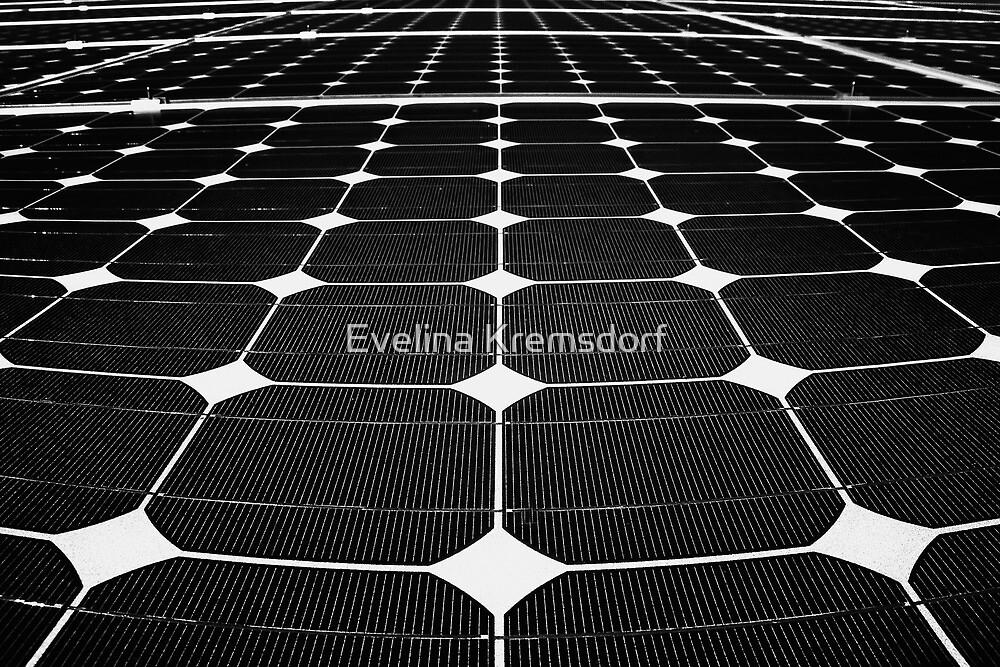 Energy Net by Evelina Kremsdorf