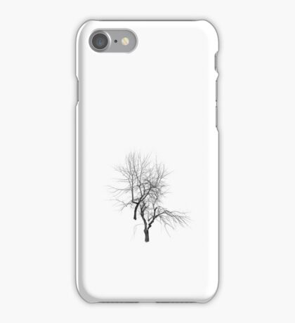 Hibernation iPhone Case/Skin