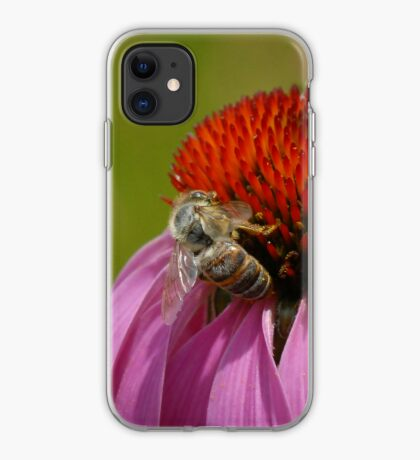 Bee on Cone Flower - iPhone Case iPhone Case