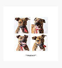 Trent Photographic Print