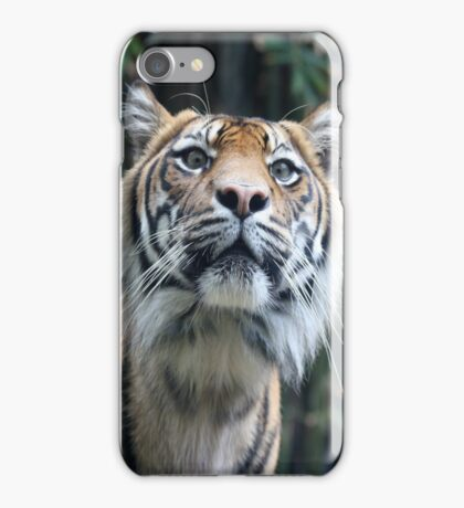 Tiger Security - IPhone case iPhone Case/Skin