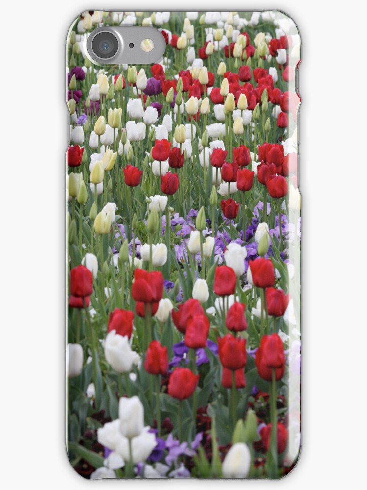 Red Tulips IPhone Cover by Kelly Robinson