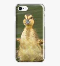 Happy Wings iPhone Cover iPhone Case/Skin