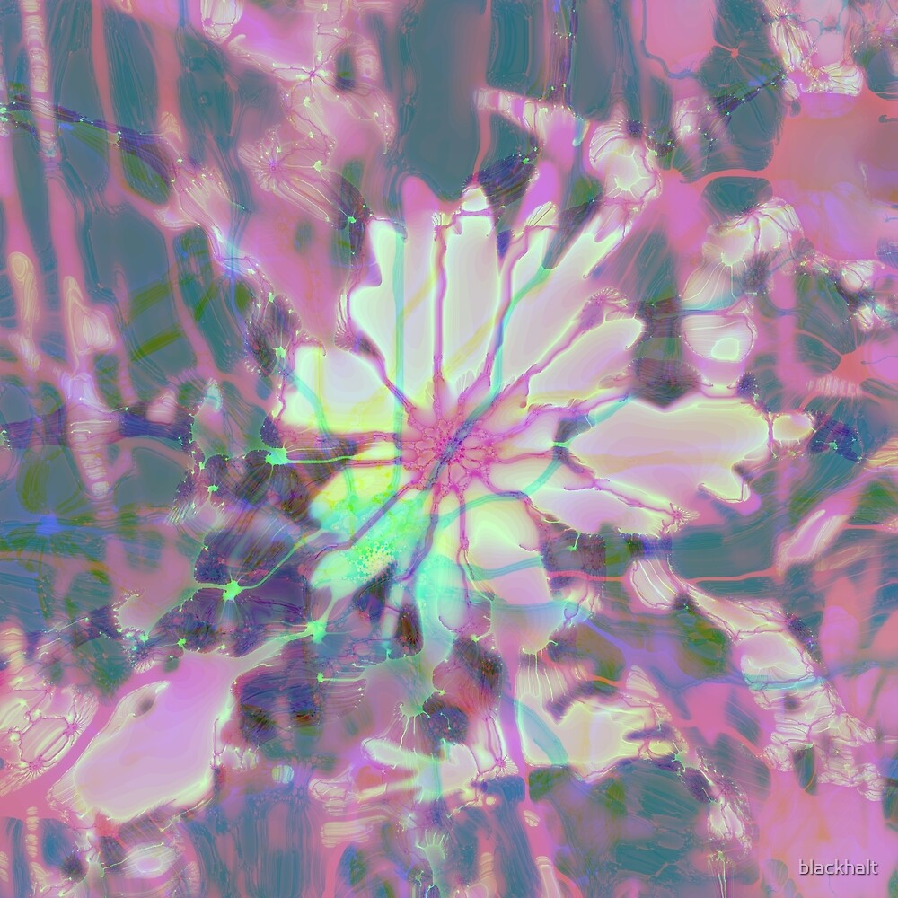 Floral abstraction by blackhalt