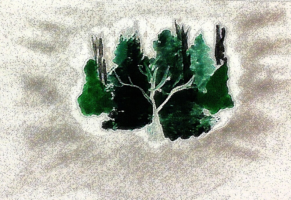 Collection of trees for Christmas, waterclor by Anna  Lewis, blind artist