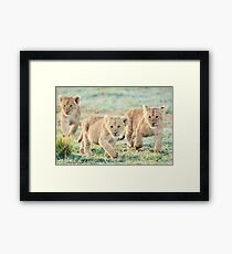 Safety in Numbers Framed Print