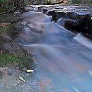 Down Stream Somersby by bazcelt