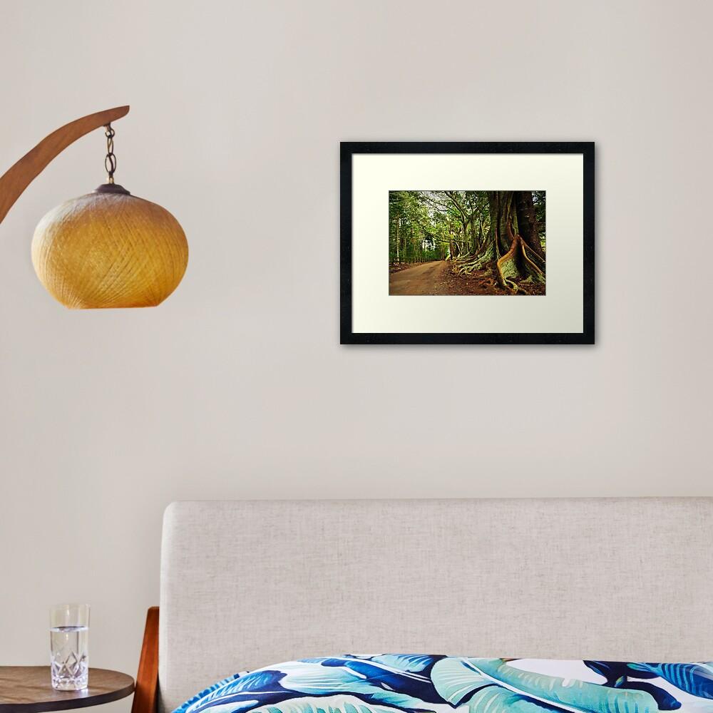 New Farm Road - Norfolk Island Framed Art Print