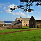Convict Ruins - Norfolk Island by Greg Earl