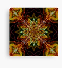 Too Much Noise Canvas Print