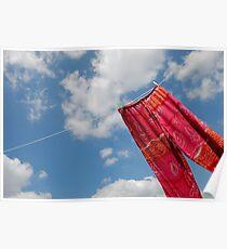 Pant hanging on washing line Poster