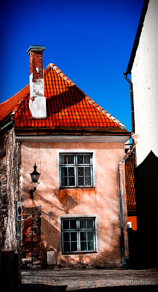 House Ver1. by tutulele