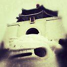 CKS Memorial, Chinese Lion, Taiwan by Brian Webb