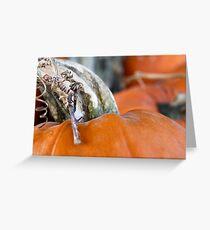 Pumpkin Love 2 Greeting Card