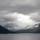Gloom over the Norweigan Fjords by Sarah Jane Bingham