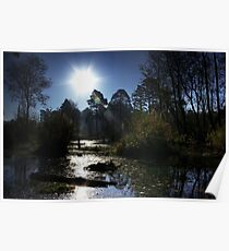 Boldermere Pond, Ockham Poster