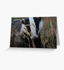Badger hide and seek Greeting Card