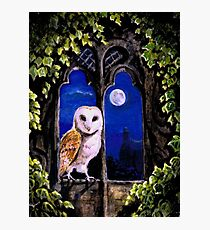 The Owl comes silent Photographic Print