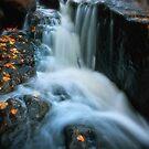 Kingsbury Creek III by Angela King-Jones