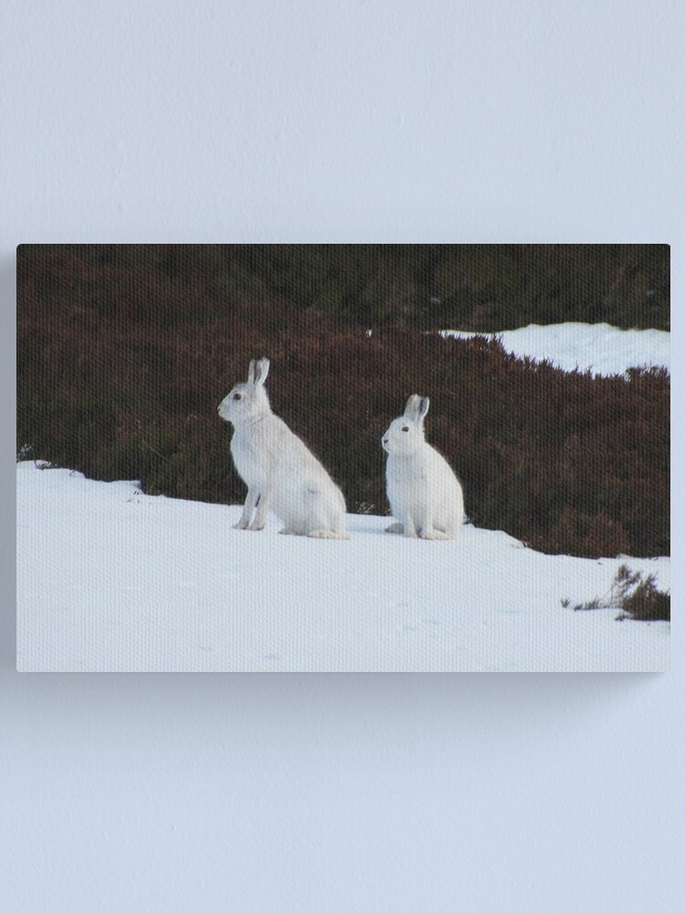 Alternate view of Winter coats Canvas Print