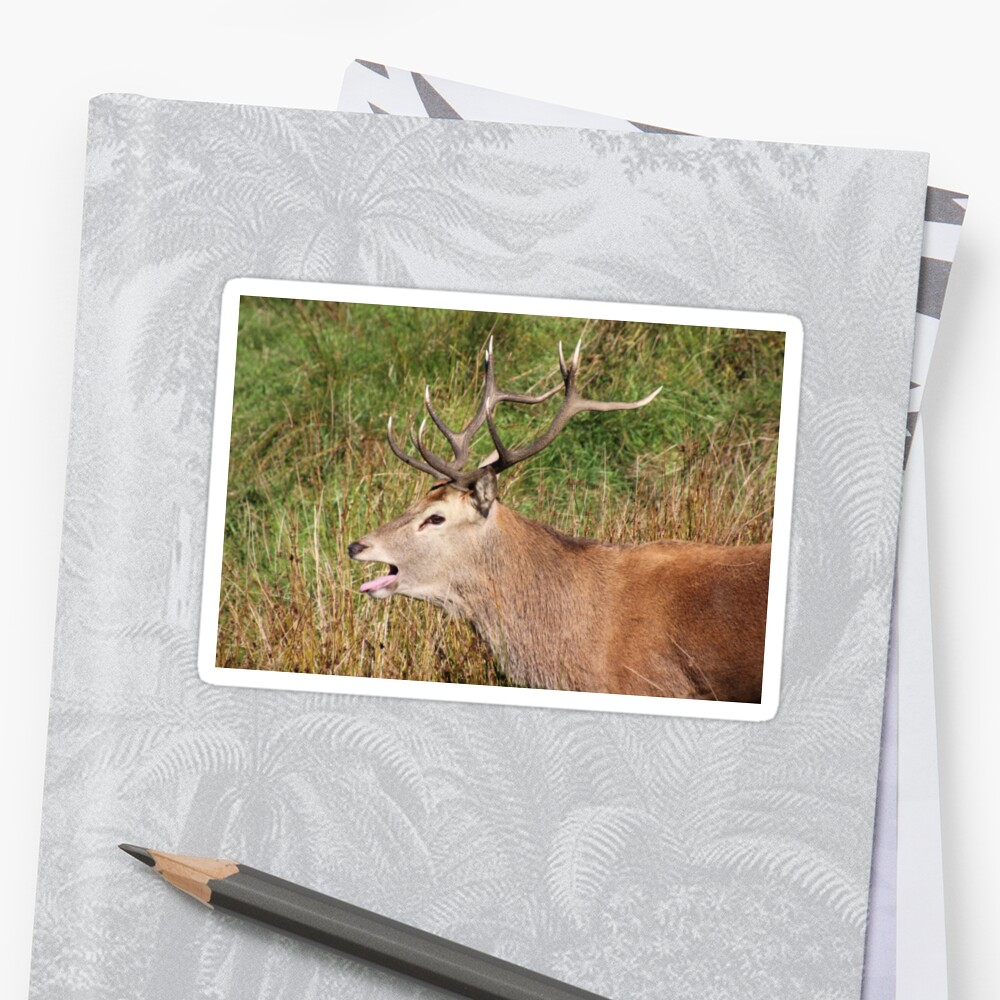 The rut Sticker