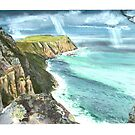 Cape Raoul and Sea Eagle by melhillswildart