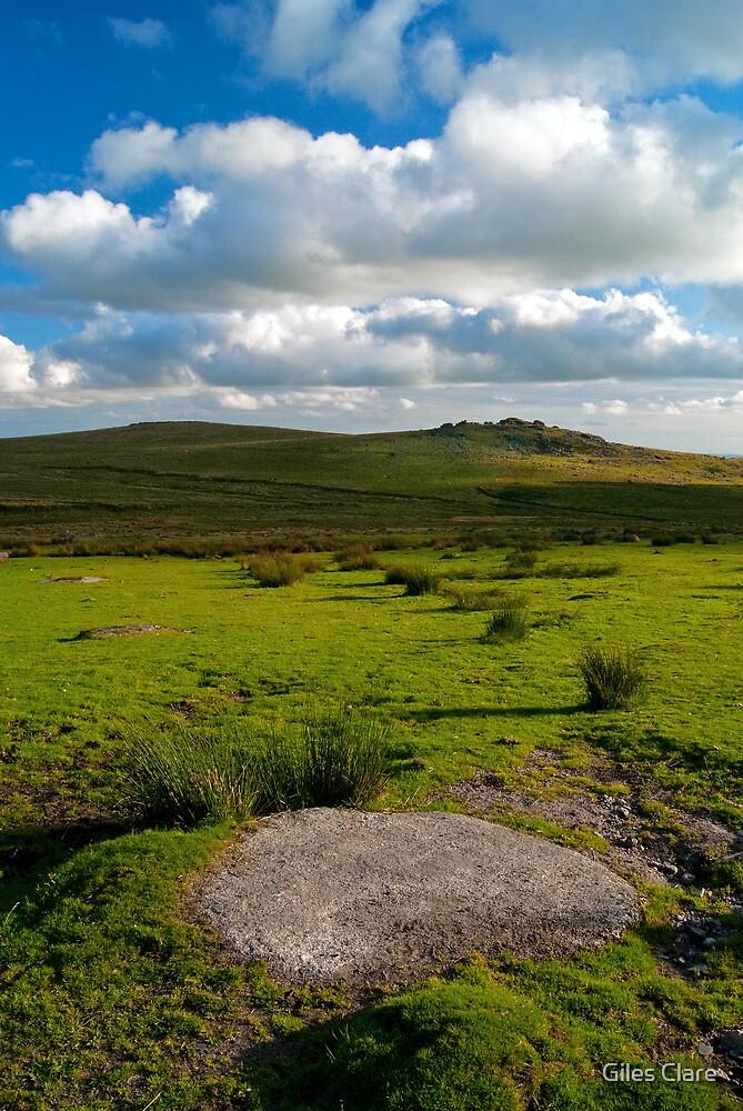King's Tor, Dartmoor, England by Giles Clare
