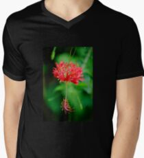 Swaying in the Breezes  Mens V-Neck T-Shirt